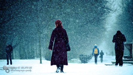 Snow in London 2, 2013 © Gordon C Burns
