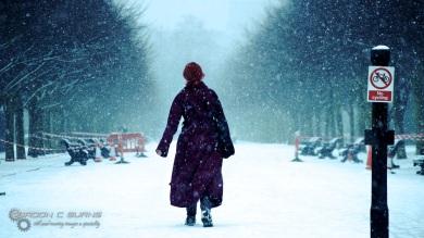 Snow in London 5, 2013 © Gordon C Burns
