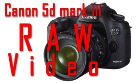 RAW video from canon 5dmk3